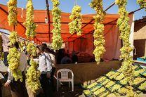 برگزاری چهارمین جشنواره انگور و بوم گردی در حسن رباط