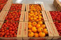 طرح صادرات محصولات کشاورزی با بسته بندیهای استاندارد اجرا شد