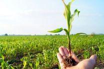 آب مورد نیاز اراضی شرکتهای کشاورزی و بنگاههای اقتصادی استان اردبیل تامین میشود