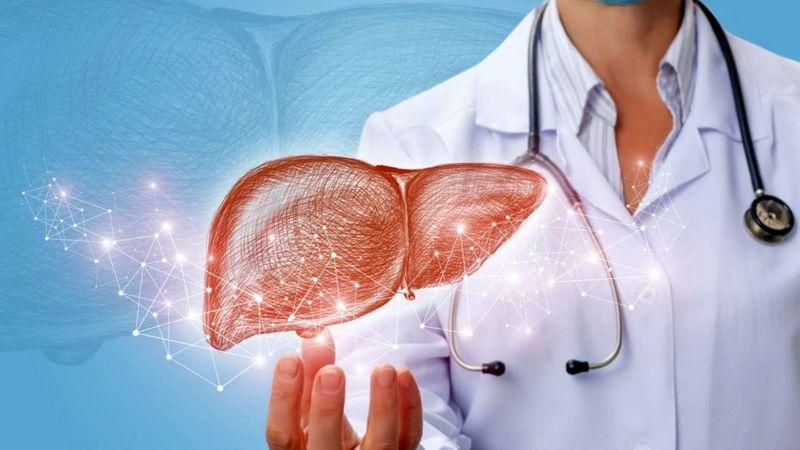 نقش کبد در سلامتی بدن/ علائم و نشانه های کبد چرب چیست؟