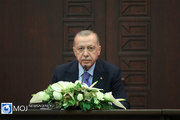 اردوغان رویای پان ترکیسم دارد/ترکیه یک بازنده بزرگ  است