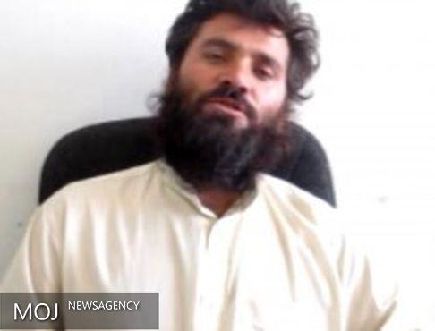 یکی از فرماندهان عملیاتی طالبان بازداشت شد