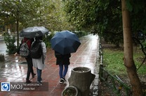 جزئیات ورود ۳ سامانه بارشی به کشور / کدام استان ها بارانی می شوند؟