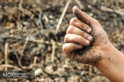 عامل انسانی علت 4 آتش سوزی در بنذرک میناب