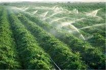 روشهای آبیاری نوین در کشاورزی هرمزگان جدی گرفته شود