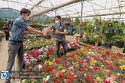 حال و هوای بازار گل اصفهان در روزهای پایانی سال