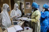 هیچ فوتی بر اثر آنفولانزا در هرمزگان گزارش نشده است