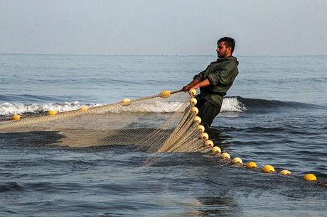 صید ماهی حلوا سفید تا اطلاع ثانوی در آبهای خوزستان ممنوع شد