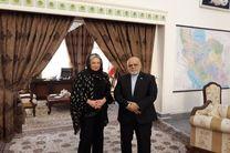 نماینده ویژه دبیرکل سازمان ملل متحد در امور عراق با ایرج مسجدی دیدار کرد