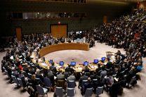 نشست فوق العاده شورای امنیت در مورد ونزوئلا