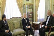دیدار خرازی با وزیر خارجه اسبق فرانسه در پاریس
