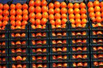 بیش از ۸۰۰ تن انواع سیب و پرتقال در یزد برای نوروز ذخیره شده است