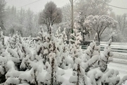 بارش برف در شهرستانهای غربی استان اصفهان / بارش 15 سانتیمتری برف در فریدونشهر