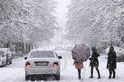 بارش برف مناطق غربی استان اصفهان را سفیدپوش کرد