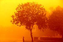 هشدار؛ احتمال آلودگی میکروبی در ۱۴ استان