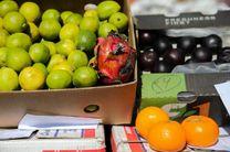 میوههای قاچاق در ظرفهای ایرانی جولان میدهند