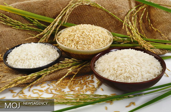 واکنش دبیر انجمن برنج به گرانی برنج ایران در جهان