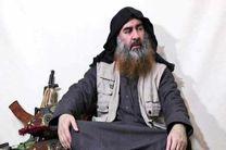 ابوبکر البغدادی فلج شده است!