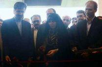 افتتاح هتل پنج ستاره در فومن با حضور رئیس سازمان میراث فرهنگی