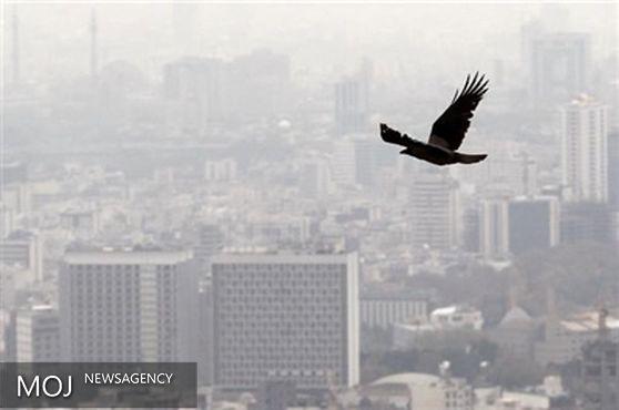آلودگی هوای پایتخت تا فردا ادامه دارد / هشدار به بیماران قلبی و ریوی
